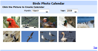 Birds Photo Calendar.png