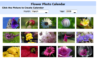 Flower Photo Calendar.png