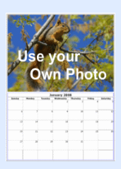 user photo calendar.png